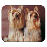 Yorkie Yorkshire Terrier Buddies Low Profile Thin Mouse Pad Mousepad