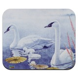 Swan Family on the Lake Low Profile Thin Mouse Pad Mousepad