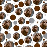 Solitary Barred Owl Premium Gift Wrap Wrapping Paper Roll