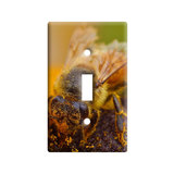 Bee Covered In Pollen On Flower Light Switch Plate Cover