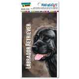 Black Labrador Retriever Brown - Dog Pet MAG-NEATO