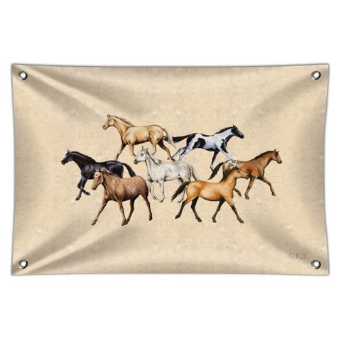 Horses of Different Colors Home Business Office Sign