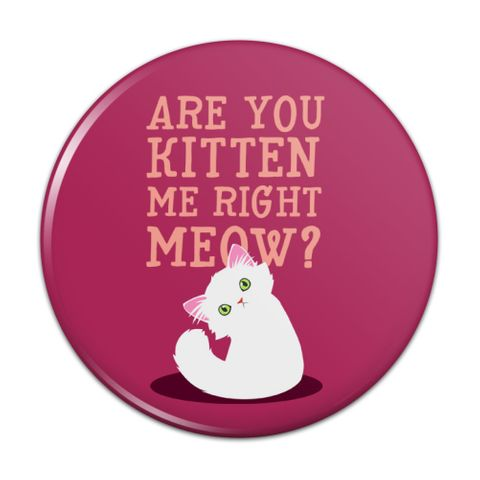 Are You Kitten Me Right Meow Cat Compact Pocket Purse Hand Cosmetic Makeup Mirror