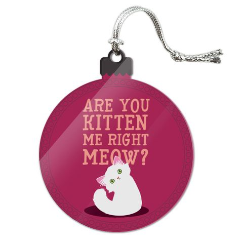 Are You Kitten Me Right Meow Cat Acrylic Christmas Tree Holiday Ornament