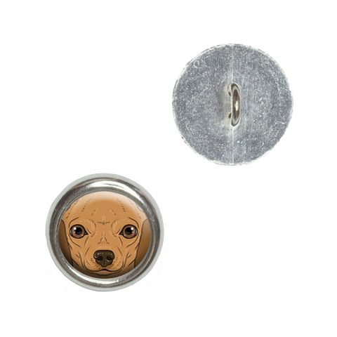 Chihuahua Face - Close-up Dog Pet Buttons - Set of 4