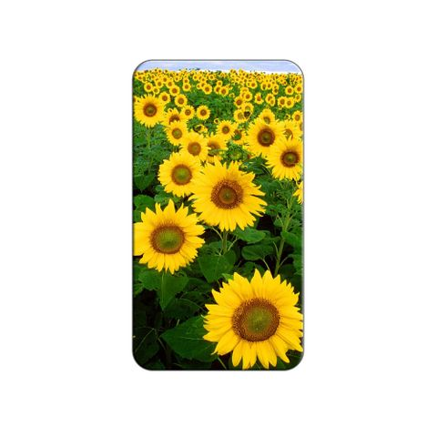 Field of Sunflowers Lapel Hat Pin Tie Tack