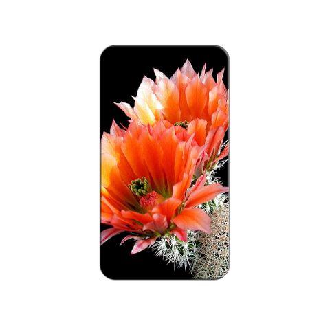 Cactus Flowers Lapel Hat Pin Tie Tack
