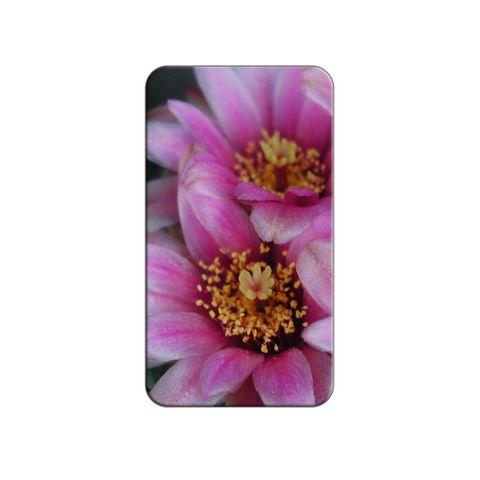 Pink Cactus Flowers Lapel Hat Pin Tie Tack