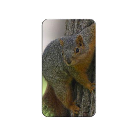 Squirrel Lapel Hat Pin Tie Tack
