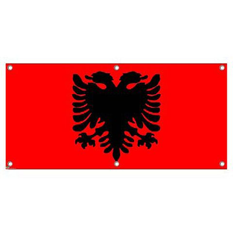 Albania Flag - International Celebration Party Banner