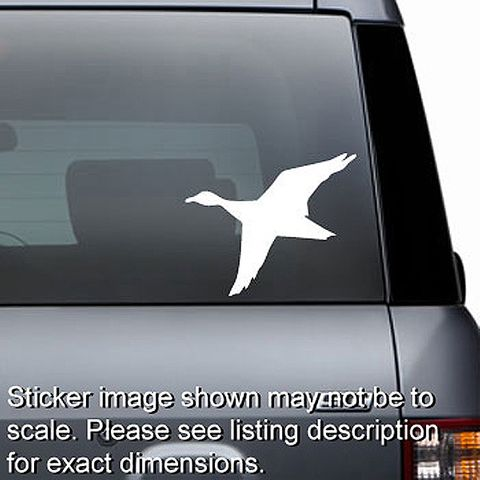 Duck Decal