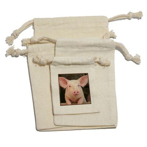 Cute Pig Funny - Birthday Kid
