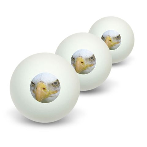Bald Eagle Staring - Raptor Bird of Prey Novelty Table Tennis Ping Pong Ball 3 Pack