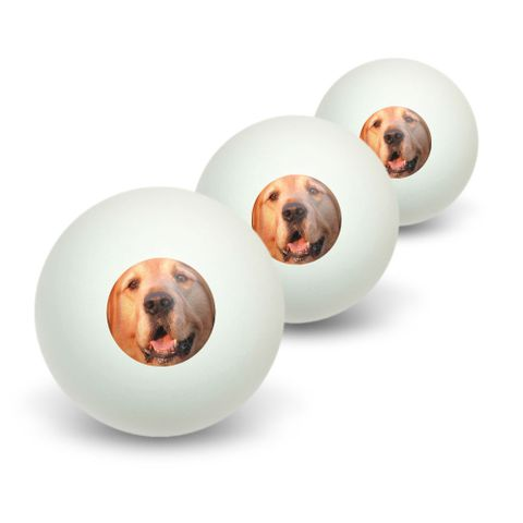 Golden Retriever Dog Novelty Table Tennis Ping Pong Ball 3 Pack