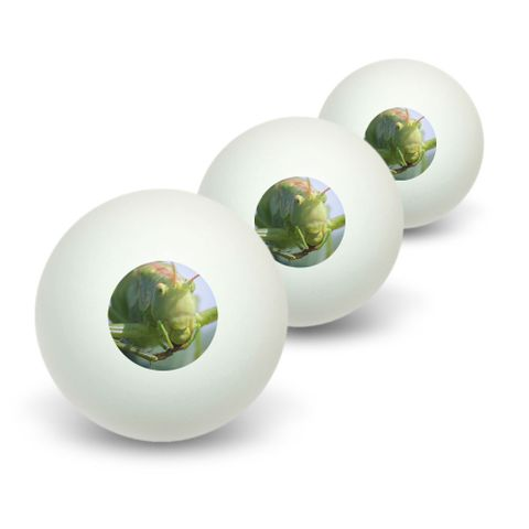 Grasshopper on Leaf Novelty Table Tennis Ping Pong Ball 3 Pack