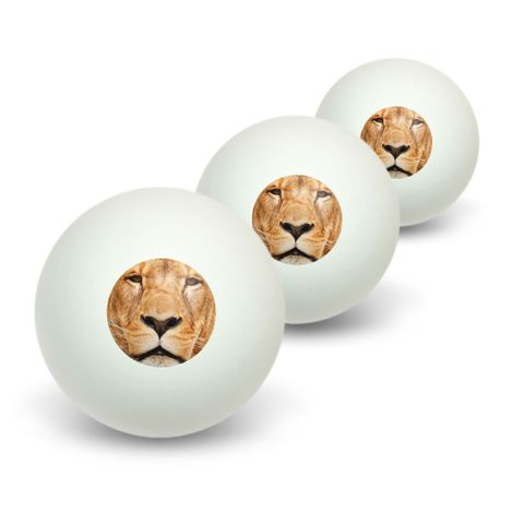 Portrait of a Male Lion Novelty Table Tennis Ping Pong Ball 3 Pack