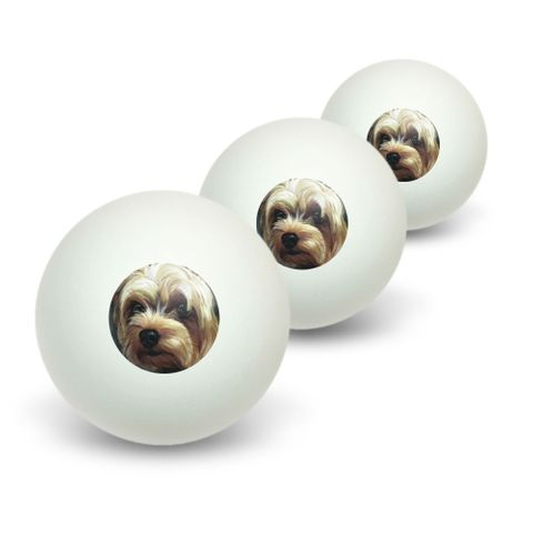 Yorkshire Terrier - Yorkie Dog Pet Novelty Table Tennis Ping Pong Ball 3 Pack