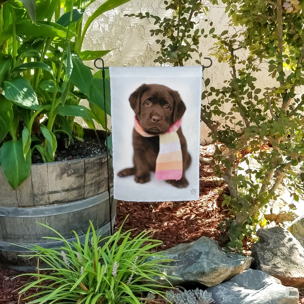 Lab Labrador Puppy Dog Wearing Scarf Garden Yard Flag