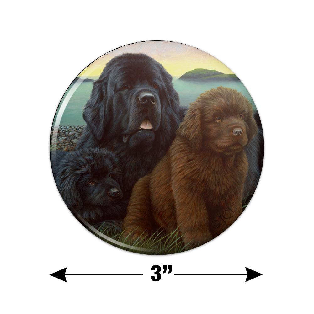 Newfoundland Dogs Puppies Countryside Kitchen Refrigerator Locker Button Magnet