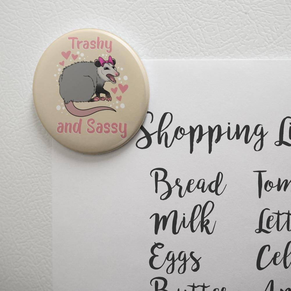 Trashy And Sassy Opossum Funny Kitchen Refrigerator Locker