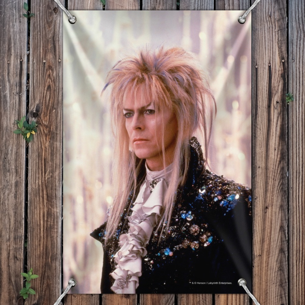 David Bowie As Jareth Labyrinth Candles Home Business Office Sign