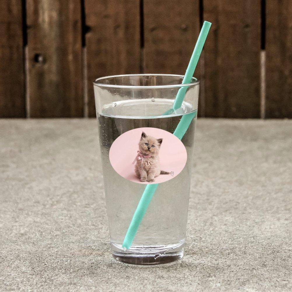 Drinking Glass CafePress Tuxedo Kitty Cat Pint Glass 16 oz