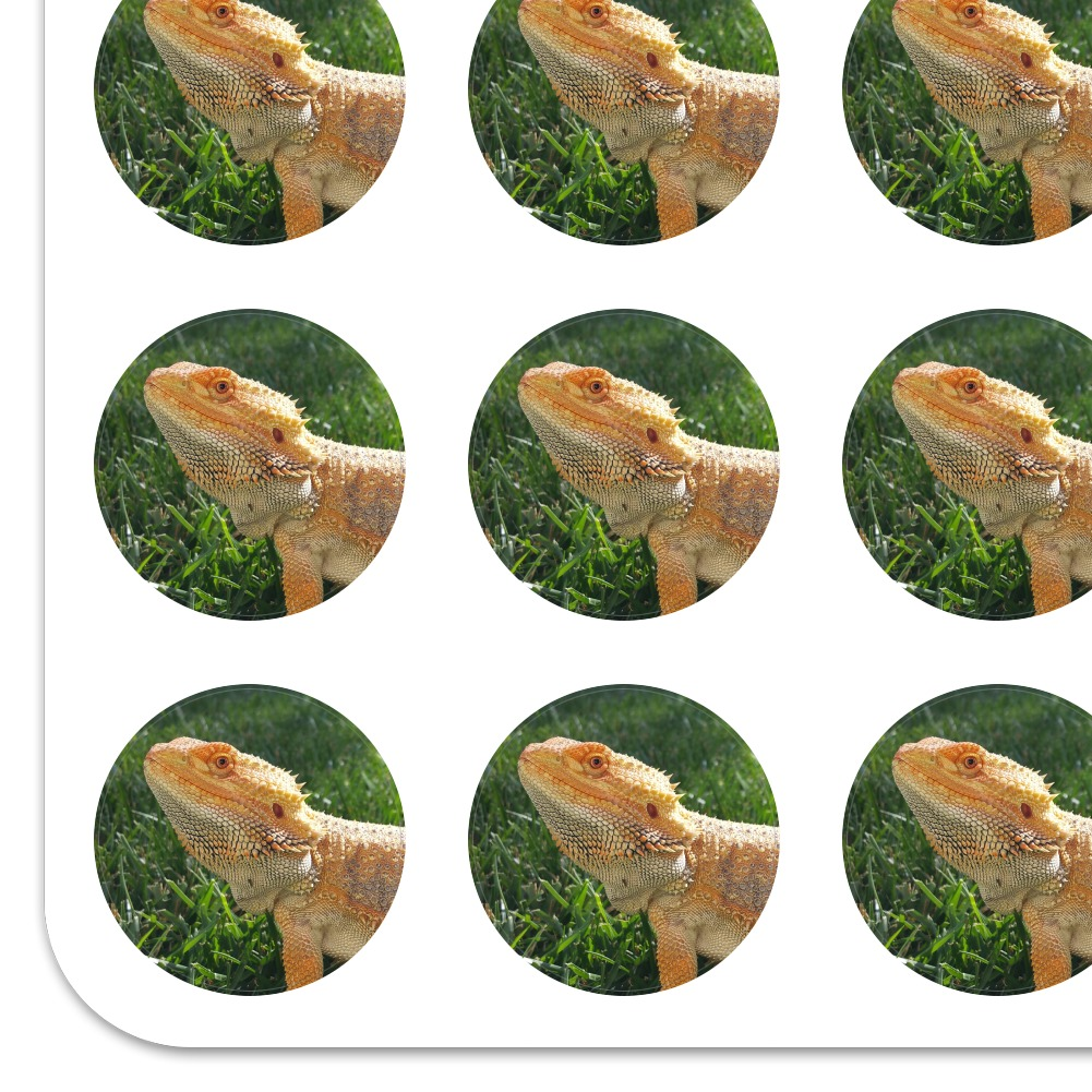 Bearded Dragon in Profile Planner Calendar Scrapbooking Crafting Stickers