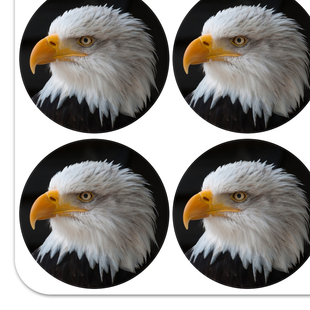 GROSSMAN/'S BALD EAGLE STRIP STICKERS EMBELLISHMENTS NEW A10208 MRS