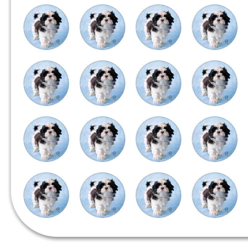 Shih Tzu Dog Proud Blue Planner Calendar Scrapbooking Crafting Stickers