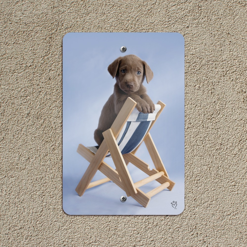 Lab Labrador Puppy Dog in Beach Lounger Chair Home Business Office Sign