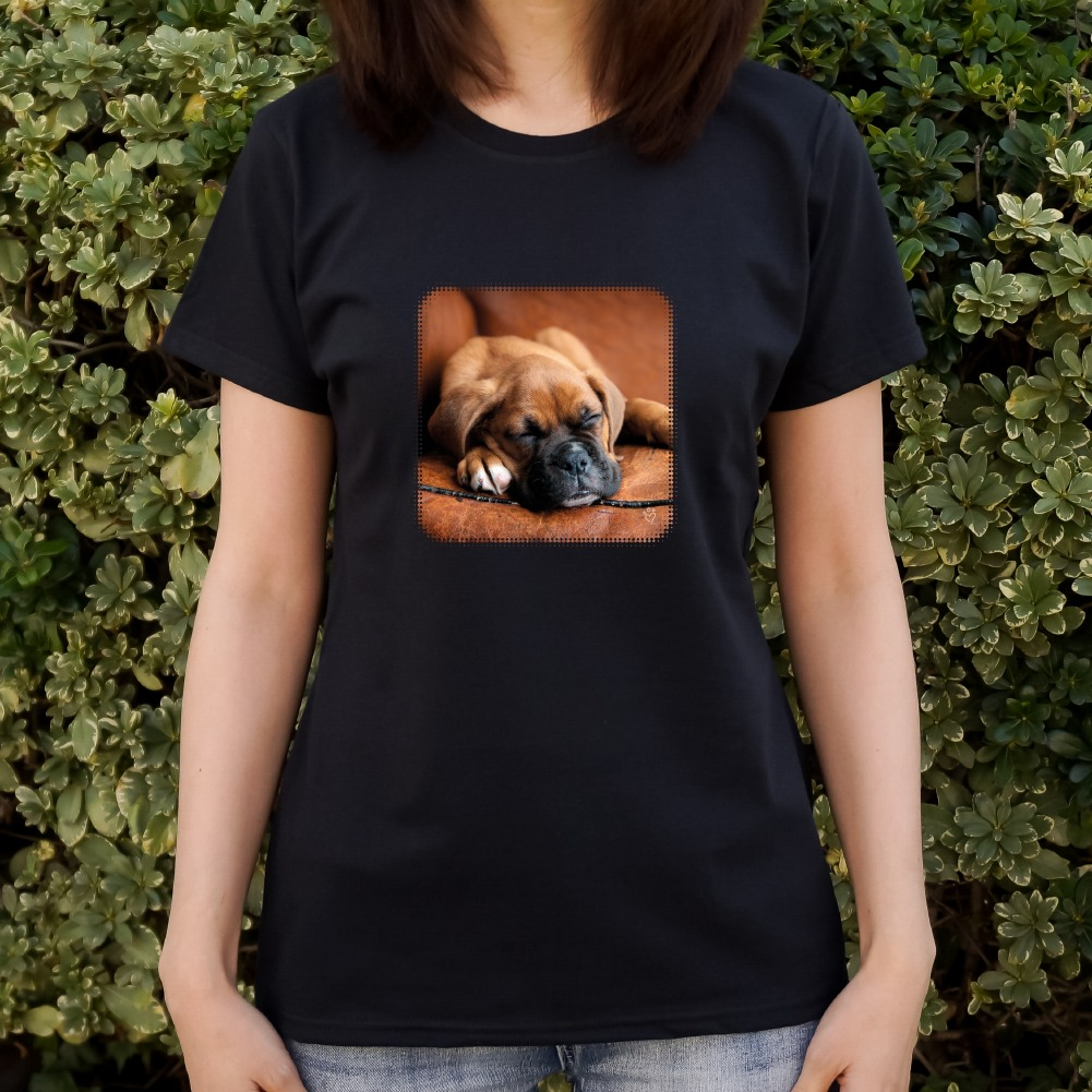 Boxer Dog T Shirts For Sale - DREAMWORKS