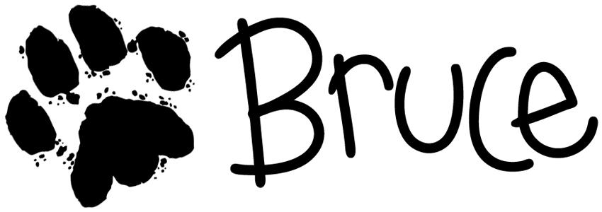 Bruce Signature