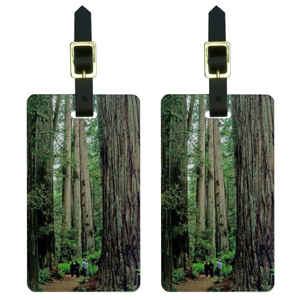Redwood National Park CA Luggage Tag Set